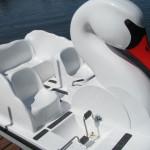 Swan PaddleWheeler